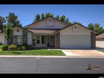 St. George Single Family Home For Sale: 1141 W 360 N #28