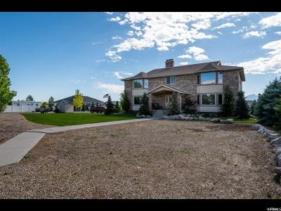 Herriman Single Family Home For Sale: 13867 S 7300 W