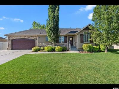 Layton Single Family Home For Sale: 2232 W 1175 N