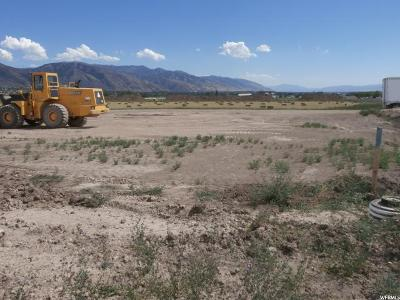 Smithfield Residential Lots & Land For Sale: 286 E 700 S