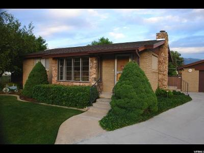 Midvale Single Family Home For Sale: 343 W Alta View Dr S