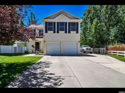 Wasatch County Single Family Home Under Contract: 467 N 500 W