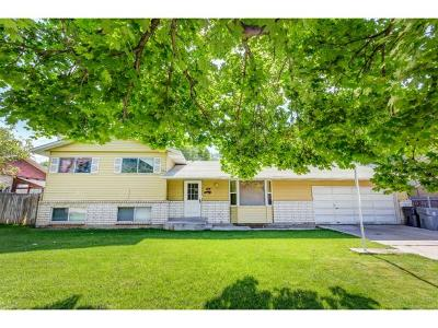 American Fork Single Family Home Under Contract: 814 N 400 E