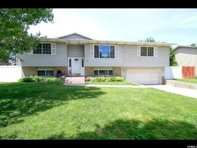 Single Family Home For Sale: 361 N 480 W