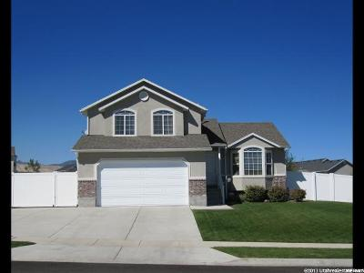 Riverton Single Family Home For Sale: 5362 W Autumn Creek Dr