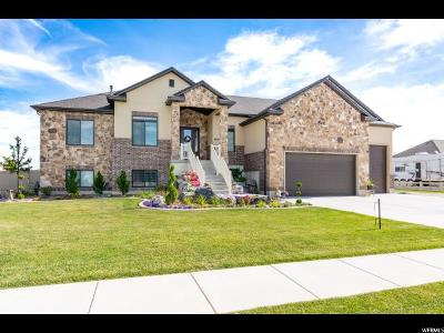 Weber County Single Family Home Under Contract: 4885 W 4150 S