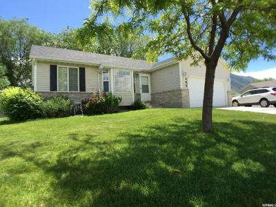Payson Single Family Home For Sale: 1265 S Daley Cir