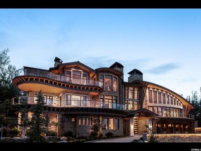 Park City Single Family Home For Sale: 9828 N Summit View Dr