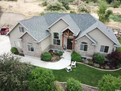 American Fork Single Family Home For Sale: 767 E 750 N
