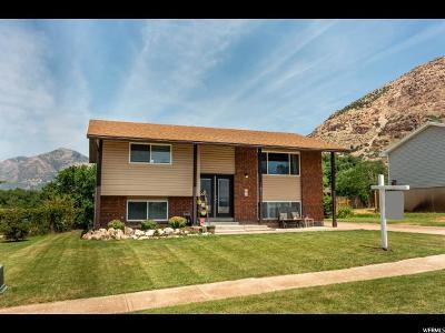 Ogden Single Family Home For Sale: 984 E 500 N