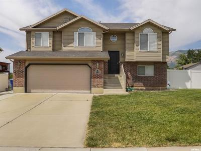Ogden Single Family Home For Sale: 606 E Canyon View Dr