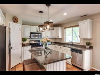 Draper Single Family Home For Sale: 377 W Bricker Dr