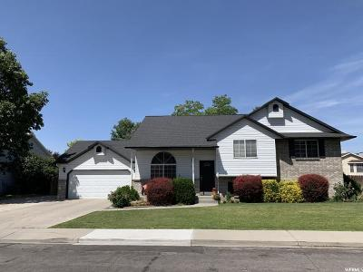 Orem Single Family Home For Sale: 1069 N 470 W