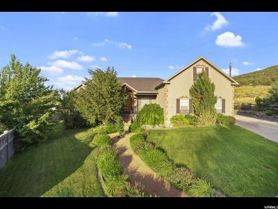 Eagle Mountain Single Family Home For Sale: 7518 N Darnaway Ct