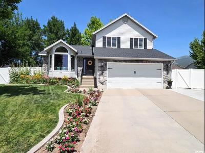 Kaysville Single Family Home For Sale: 1548 S 350 E