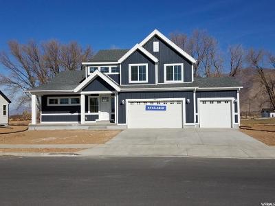 Mapleton Single Family Home For Sale: 2482 W Hancock St #88