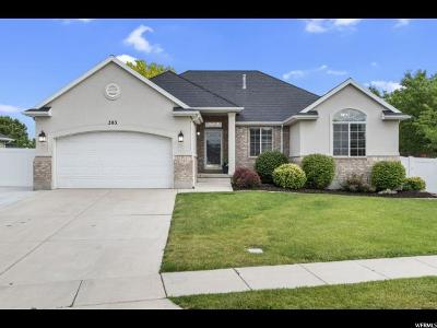 Clearfield Single Family Home For Sale: 383 E 1900 S
