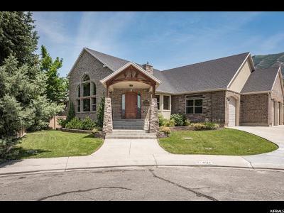 Cedar Hills Single Family Home For Sale: 4520 Spring Cir