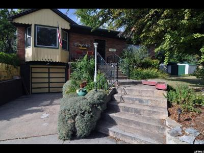 Ogden Single Family Home For Sale: 1130 E 12th St S