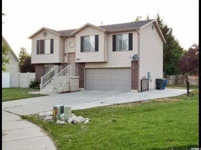 Ogden Single Family Home For Sale: 859 S 200 W