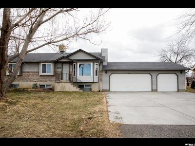 Clinton Single Family Home For Sale: 2436 N 2000 W