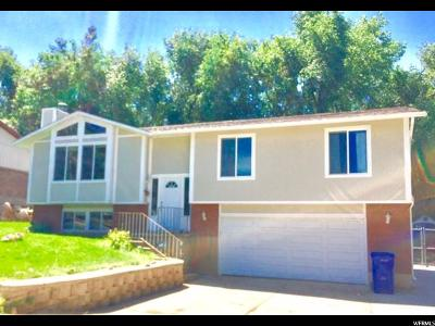 North Ogden Single Family Home For Sale: 1065 E 800 N
