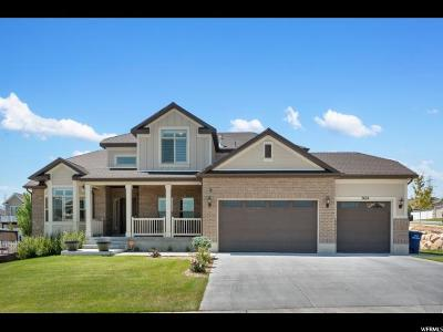 West Jordan Single Family Home For Sale: 7424 S 5635 W
