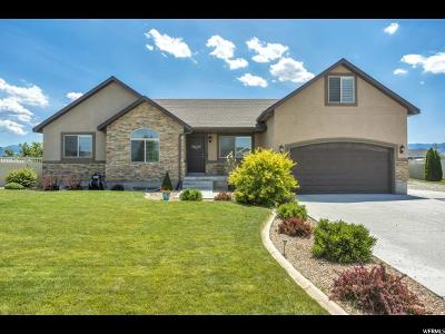 Grantsville UT Single Family Home For Sale: $394,800