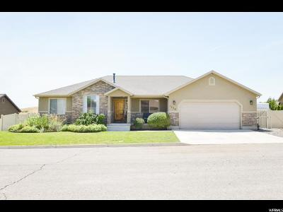 Santaquin Single Family Home Under Contract: 1379 Cedar Pass Dr
