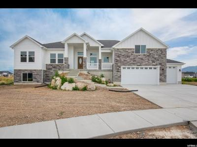 Weber County Single Family Home For Sale: 2956 W 2500 S