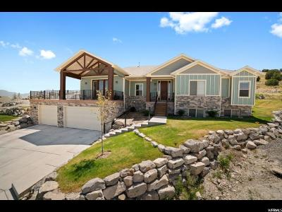 Eagle Mountain Single Family Home For Sale: 3712 E Butterfield Rd