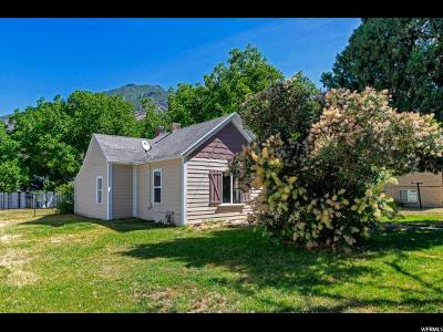 Springville Single Family Home For Sale: 377 E 300 N