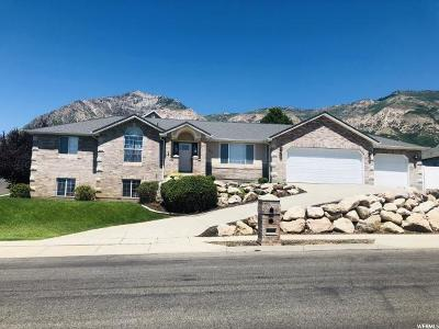 North Ogden Single Family Home For Sale: 804 E 3300 N