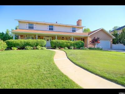 Single Family Home For Sale: 1028 E 690 S