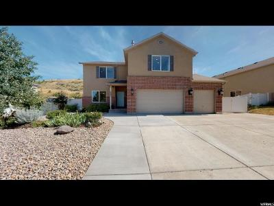 Herriman Single Family Home For Sale: 7093 W Klorissa Pl S