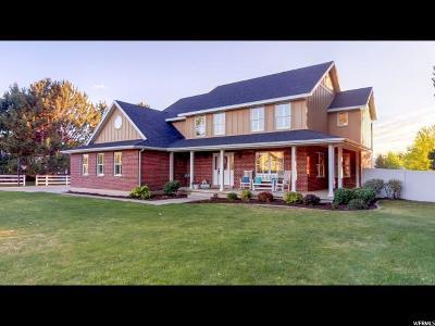 Lehi Single Family Home For Sale: 2969 N 600 E