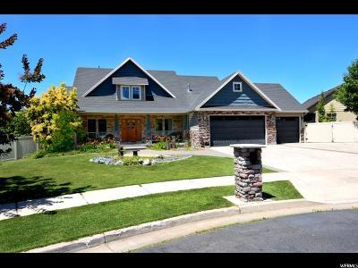Smithfield Single Family Home For Sale: 955 E 380 S