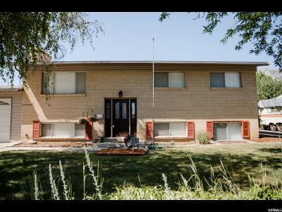 Orem Single Family Home For Sale: 719 E 600 N