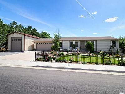 Lehi Single Family Home For Sale: 1230 E 900 N