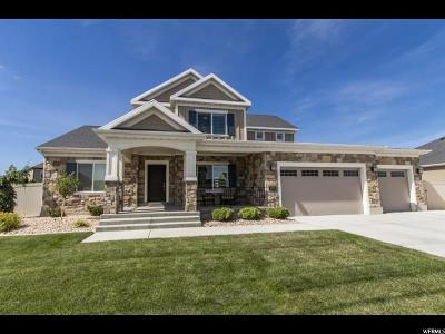 Lehi Single Family Home For Sale: 2076 W 520 N