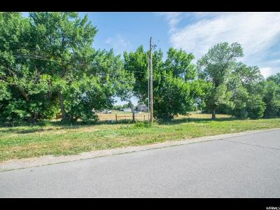 Wellsville Residential Lots & Land Under Contract: 500 S 200 W