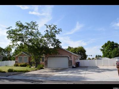 Midvale Single Family Home For Sale: 1189 E Mecham Ln S