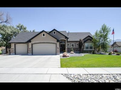 Farr West Single Family Home Backup: 2296 N 2700 W