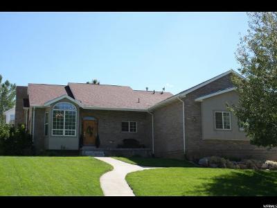 Elk Ridge Single Family Home For Sale: 112 E Ama Fille Ln