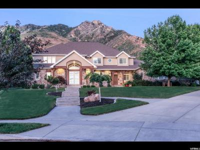 Alpine Single Family Home For Sale: 1210 Wintergreen Ct