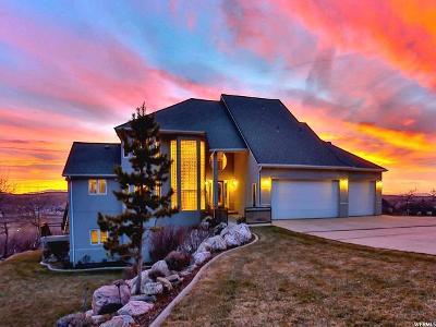 Ogden Single Family Home For Sale: 6485 Bybee Dr E