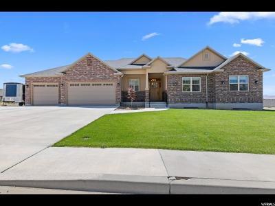 Nephi Single Family Home For Sale: 882 S 310 E