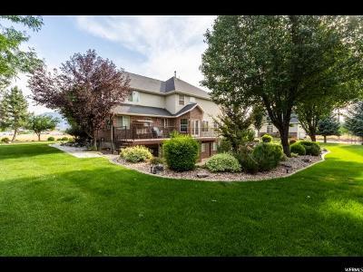 Mapleton Single Family Home For Sale: 825 E 900 N