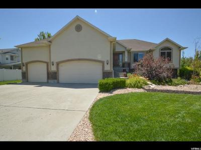 Farr West Single Family Home For Sale: 2535 W 3500 N