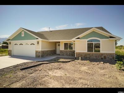 Tremonton UT Single Family Home For Sale: $256,900